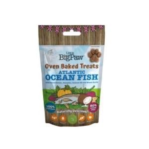 Ocean fish godbid
